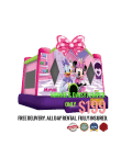 minnie-mouse-jumer-rental-san-diego