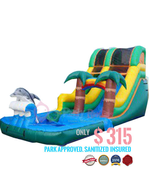 Tropical-Dolphin-Wet-Slide